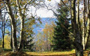 Erlebnisse Hofheim