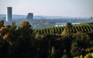 Erlebnisse Bonn