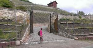 Erlebnisse Naumburg