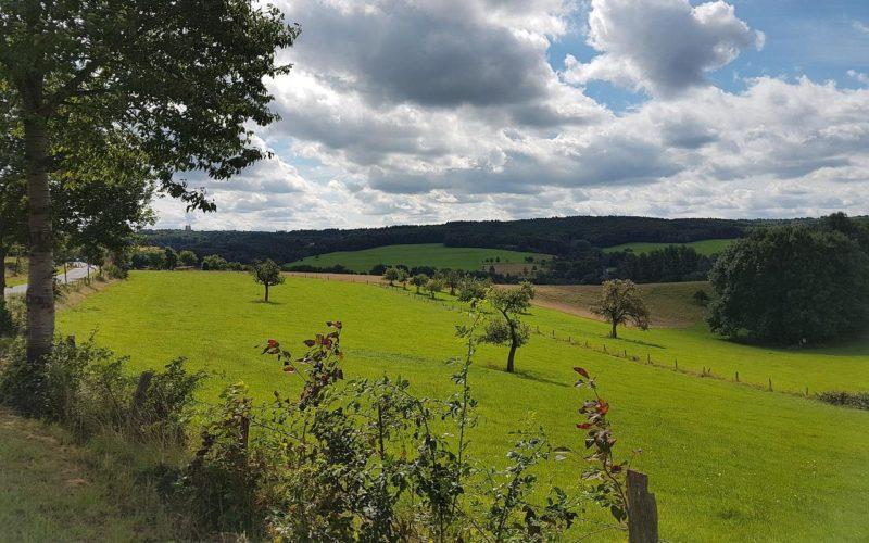 Erlebnisse Bergisch Gladbach